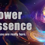 empower-your-essence-hero-banner